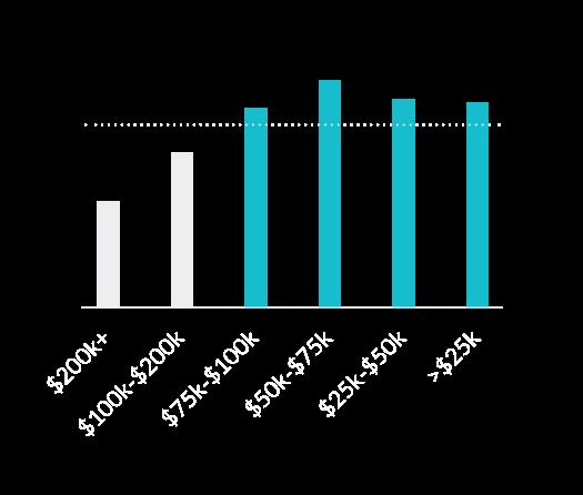 Chart: Demographics - income