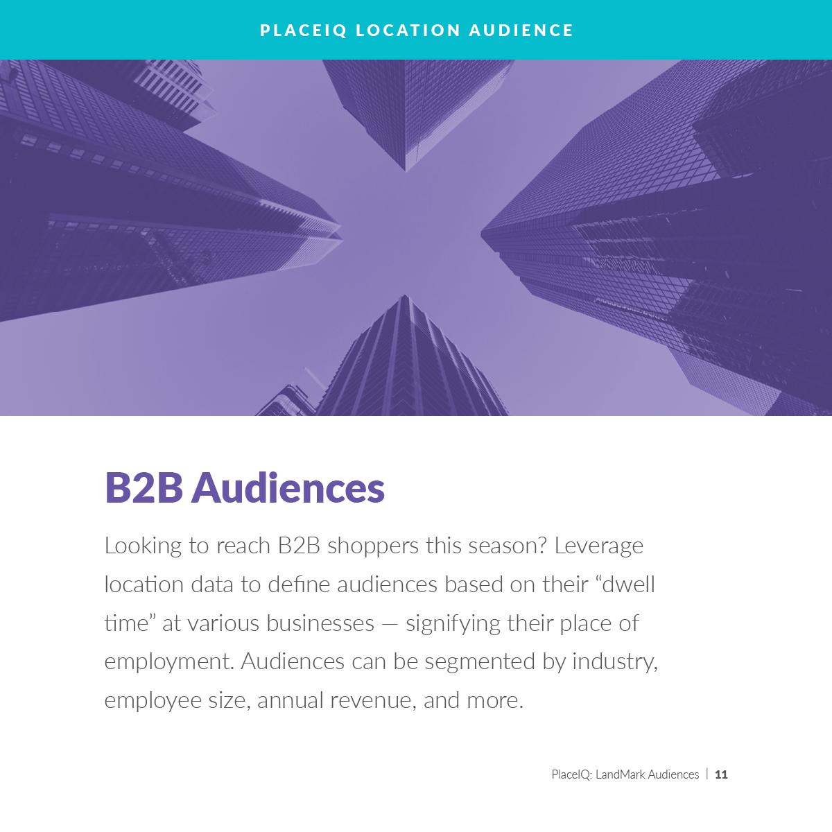 B2B Audiences